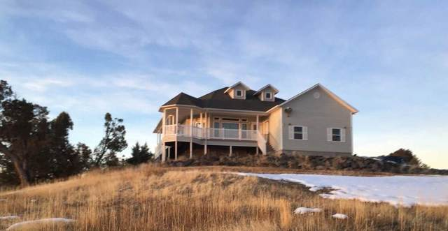 14480 Scott Loop, Collbran, CO 81624 (MLS #20200457) :: The Danny Kuta Team