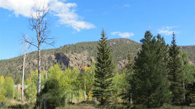 Lot 26 Quail Ridge, Antonito, CO 81120 (MLS #20200611) :: The Christi Reece Group