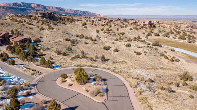 2318 Meridian Court, Grand Junction, CO 81507 (MLS #20200654) :: The Christi Reece Group