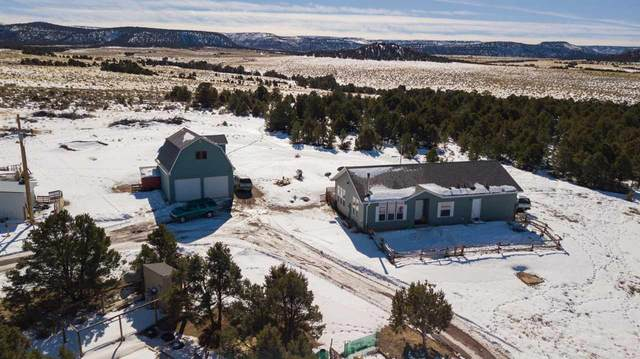 4701 S 7 1/2 Road, Glade Park, CO 81523 (MLS #20200716) :: The Christi Reece Group