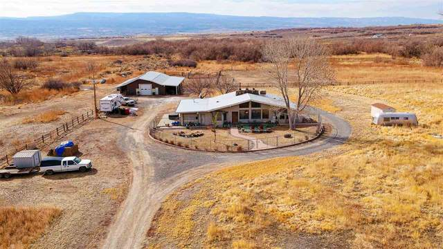 2410 Purdy Mesa Road, Whitewater, CO 81527 (MLS #20200795) :: The Christi Reece Group