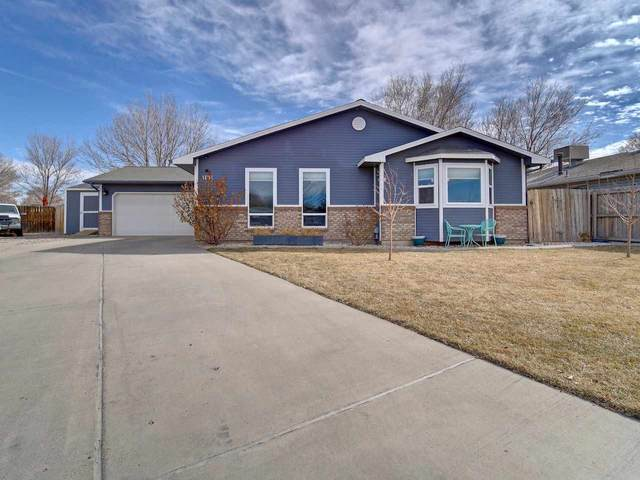 1131 N Linden Court, Fruita, CO 81521 (MLS #20200816) :: The Christi Reece Group