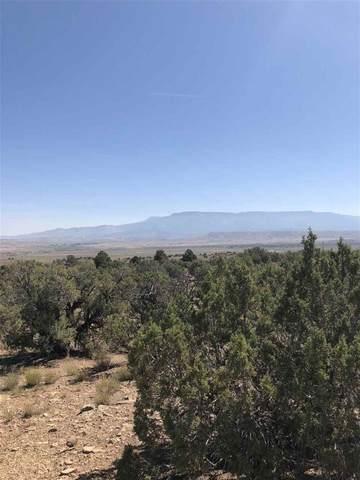 Rt 1 Desert Road, Whitewater, CO 81527 (MLS #20200820) :: The Christi Reece Group