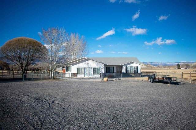 1618 H 75 Road, Delta, CO 81416 (MLS #20200898) :: The Christi Reece Group