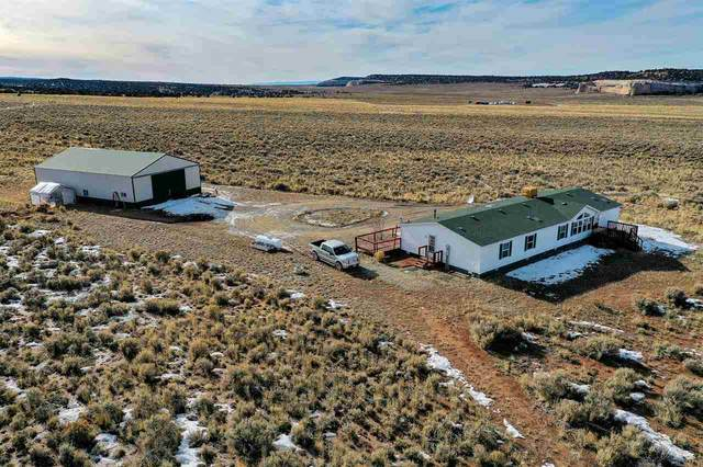 12500 Bs Road, Glade Park, CO 81523 (MLS #20200994) :: The Grand Junction Group with Keller Williams Colorado West LLC