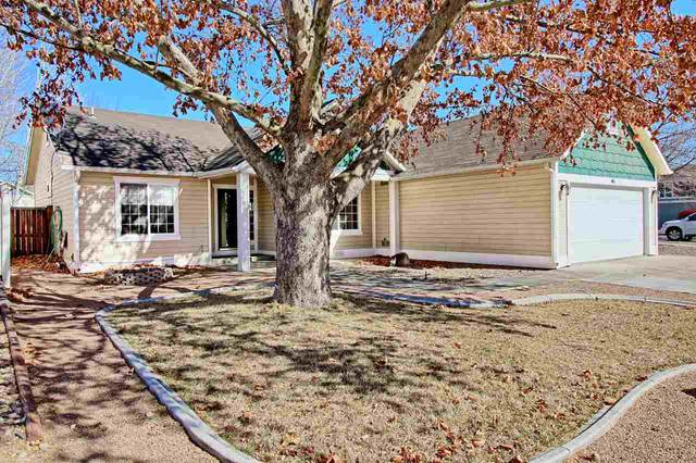 603 Cottage Meadows Court, Grand Junction, CO 81504 (MLS #20200995) :: The Grand Junction Group with Keller Williams Colorado West LLC