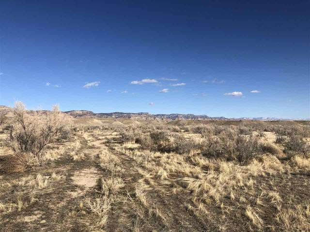 Vacant Land Tbd, Loma, CO 81524 (MLS #20201047) :: The Grand Junction Group with Keller Williams Colorado West LLC