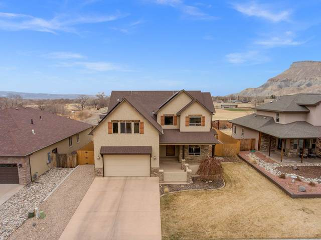 840 Shiraz Drive, Palisade, CO 81526 (MLS #20201124) :: The Christi Reece Group