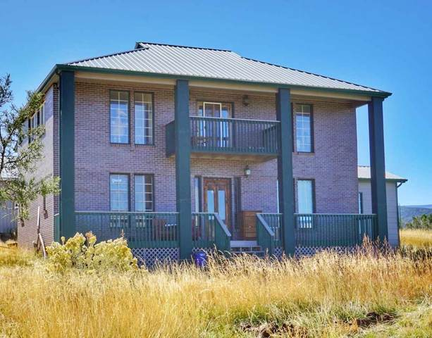 11317 52 1/2 Road, Mesa, CO 81643 (MLS #20201148) :: The Grand Junction Group with Keller Williams Colorado West LLC