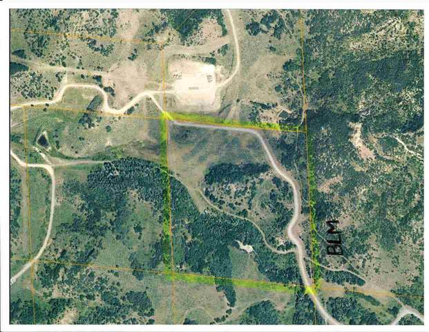 TBD Harrison Creek Road, Collbran, CO 81624 (MLS #20201221) :: The Grand Junction Group with Keller Williams Colorado West LLC