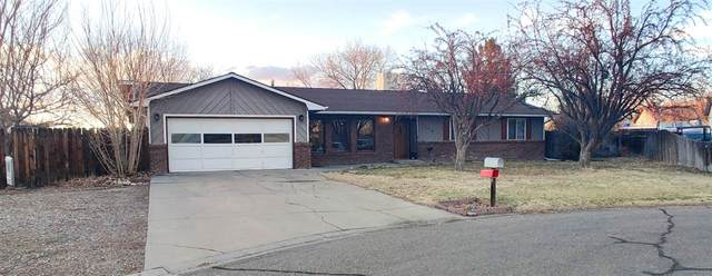 3068 Sunflower Court, Grand Junction, CO 81504 (MLS #20201262) :: The Grand Junction Group with Keller Williams Colorado West LLC