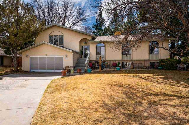 2151 Shenandoah Drive, Grand Junction, CO 81507 (MLS #20201323) :: Western Slope Real Estate