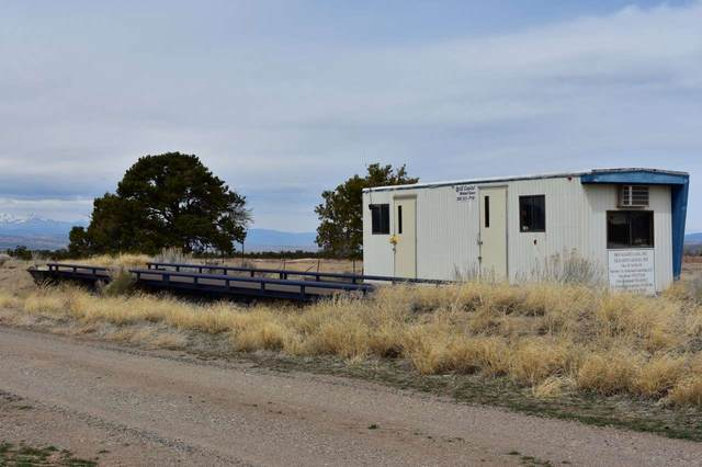 36561 3700 Road, Redvale, CO 81431 (MLS #20201331) :: The Christi Reece Group
