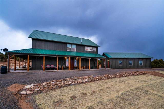 1988 Red Sandstone Way, Glade Park, CO 81523 (MLS #20201374) :: The Grand Junction Group with Keller Williams Colorado West LLC