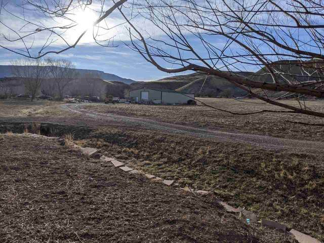 4344 Kannah Creek Road, Whitewater, CO 81527 (MLS #20201415) :: The Grand Junction Group with Keller Williams Colorado West LLC