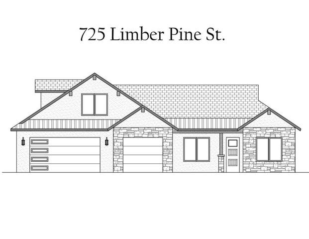 725 Limber Pine Street, Fruita, CO 81521 (MLS #20201449) :: The Grand Junction Group with Keller Williams Colorado West LLC