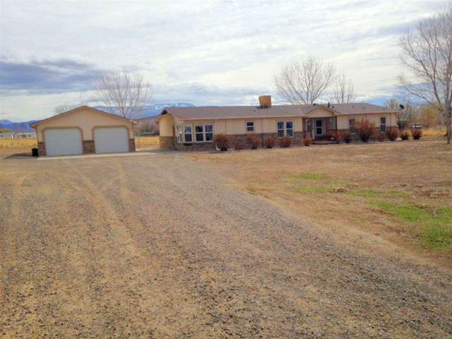 694 29 1/2 Road, Grand Junction, CO 81504 (MLS #20201450) :: The Christi Reece Group