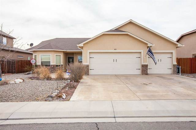 825 Baco Noir Lane, Fruita, CO 81521 (MLS #20201458) :: The Grand Junction Group with Keller Williams Colorado West LLC