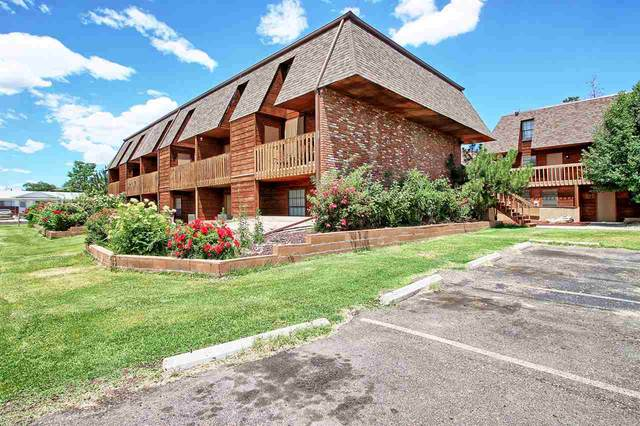 2260 N 13th Avenue #9, Grand Junction, CO 81501 (MLS #20201473) :: The Christi Reece Group