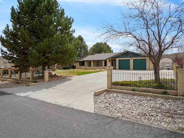 2039 N Surrey Court, Grand Junction, CO 81507 (MLS #20201503) :: The Grand Junction Group with Keller Williams Colorado West LLC