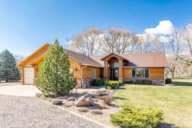 2029 Baseline Drive, Grand Junction, CO 81507 (MLS #20201515) :: The Christi Reece Group
