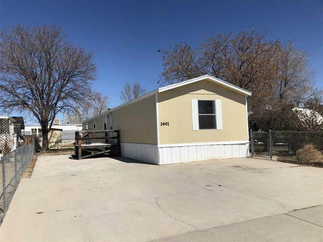 1441 Leo Avenue, Fruita, CO 81521 (MLS #20201521) :: The Grand Junction Group with Keller Williams Colorado West LLC