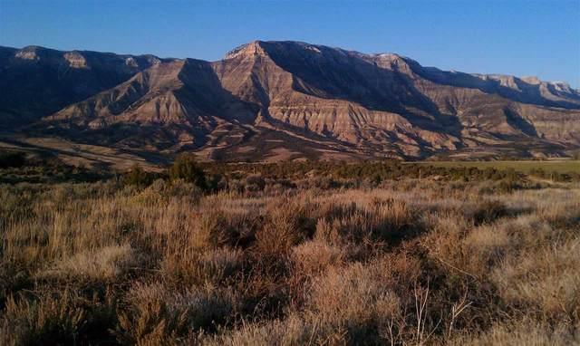 2893 Morrisania Mesa Road, Parachute, CO 81635 (MLS #20201526) :: CENTURY 21 CapRock Real Estate