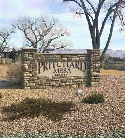 1020 Pritchard Mesa Court, Grand Junction, CO 81505 (MLS #20201553) :: The Grand Junction Group with Keller Williams Colorado West LLC