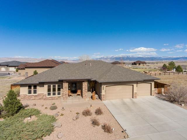 2690 Lookout Lane, Grand Junction, CO 81503 (MLS #20201568) :: The Christi Reece Group