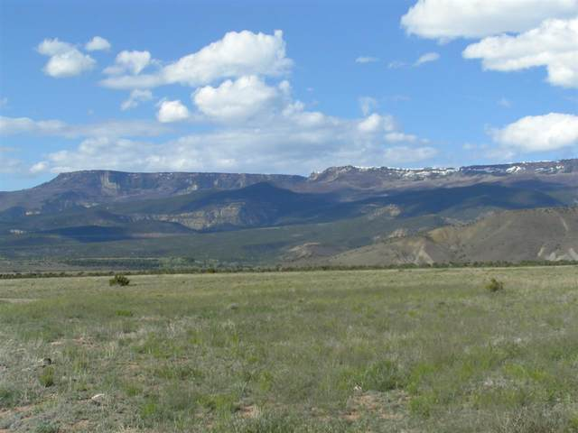 TBD Kannah Creek Road, Whitewater, CO 81527 (MLS #20201639) :: CENTURY 21 CapRock Real Estate