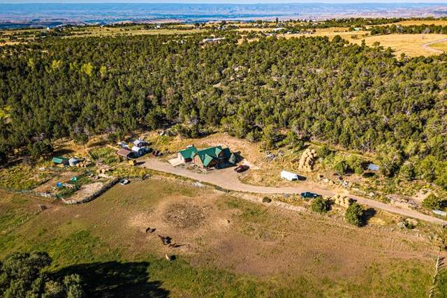 17586 2550 Road, Cedaredge, CO 81413 (MLS #20201844) :: The Grand Junction Group with Keller Williams Colorado West LLC