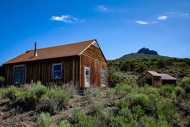 83438 Frontier Trail, Crawford, CO 81415 (MLS #20201857) :: The Christi Reece Group