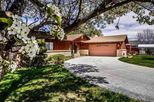 3022 Vin Rose Way, Grand Junction, CO 81504 (MLS #20201861) :: The Danny Kuta Team