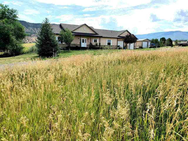 14600 N Ouray Court, Collbran, CO 81624 (MLS #20201975) :: The Christi Reece Group