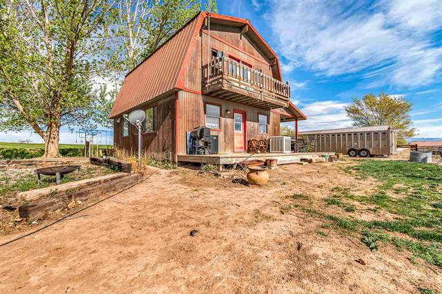 582 1600 Road, Delta, CO 81416 (MLS #20202014) :: CENTURY 21 CapRock Real Estate