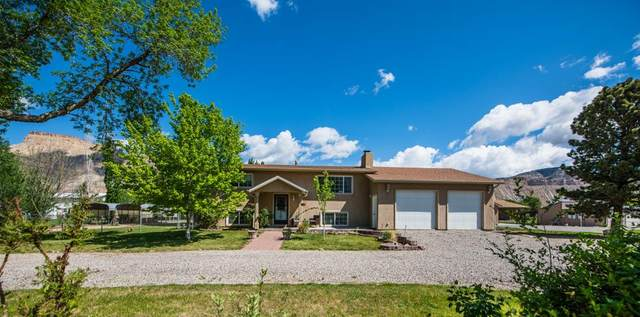 3588 G Road, Palisade, CO 81526 (MLS #20202055) :: The Christi Reece Group