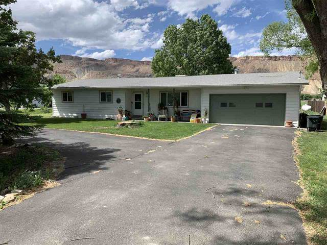 3648 G Road, Palisade, CO 81526 (MLS #20202174) :: The Christi Reece Group
