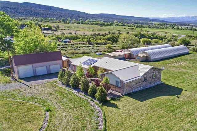 48386 IE Road, Mesa, CO 81643 (MLS #20202261) :: The Christi Reece Group