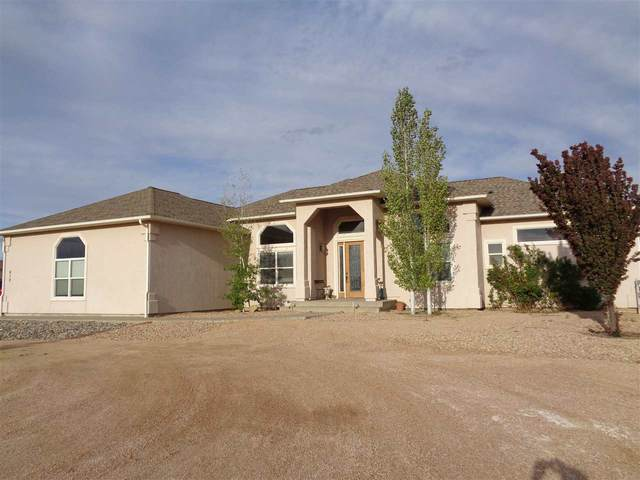 810 Mease Road, Grand Junction, CO 81505 (MLS #20202341) :: The Grand Junction Group with Keller Williams Colorado West LLC