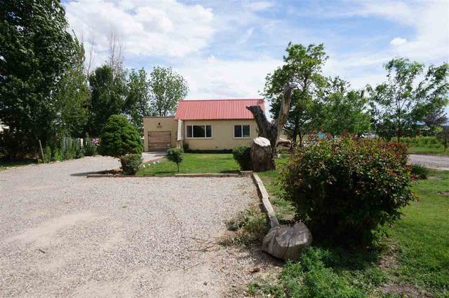 3539 G Road, Palisade, CO 81526 (MLS #20202366) :: The Christi Reece Group