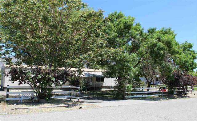 752 Garfield Drive, Palisade, CO 81526 (MLS #20202424) :: CENTURY 21 CapRock Real Estate