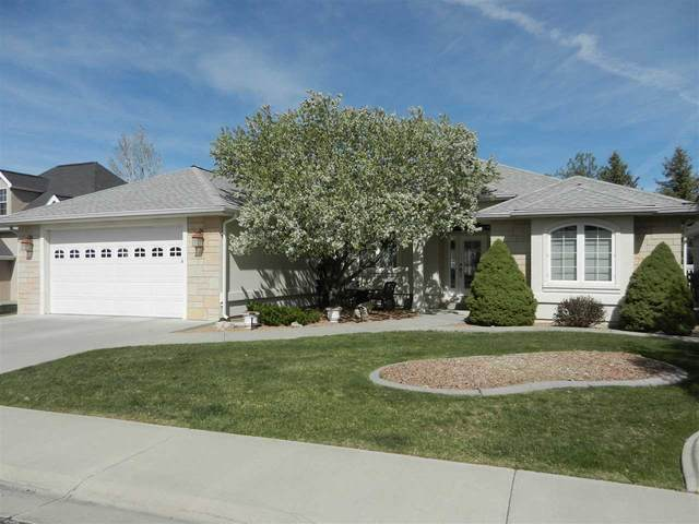 3915 Lone Tree Lane, Montrose, CO 81403 (MLS #20202438) :: The Christi Reece Group