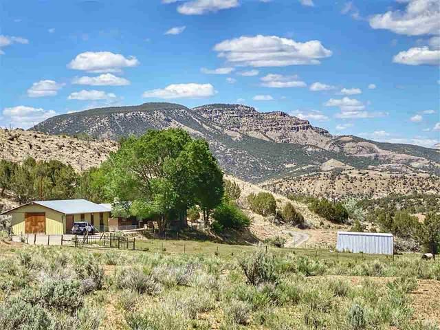11288 48 1/4 Road, Mesa, CO 81643 (MLS #20202473) :: The Christi Reece Group