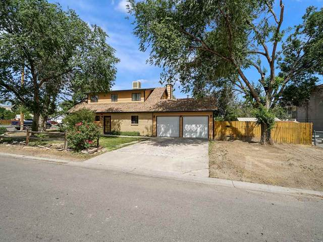 3233 D 1/2 Road, Clifton, CO 81520 (MLS #20202564) :: The Christi Reece Group