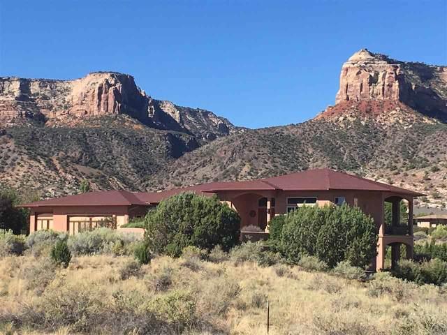 314 Rimrock Court, Grand Junction, CO 81507 (MLS #20202608) :: Western Slope Real Estate