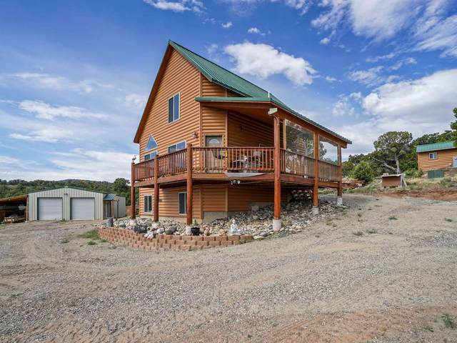 1885 Miller Canyon Ranch Road, Glade Park, CO 81523 (MLS #20202634) :: The Grand Junction Group with Keller Williams Colorado West LLC