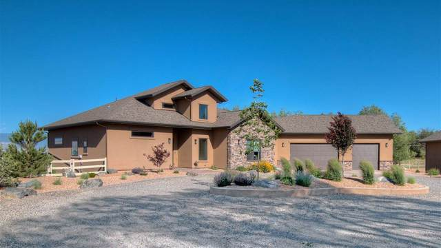 474 E Scenic Drive, Grand Junction, CO 81507 (MLS #20202639) :: Western Slope Real Estate