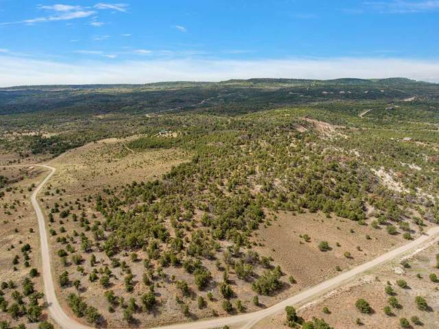 TBD Miller Canyon Ranch Road, Glade Park, CO 81523 (MLS #20202652) :: The Grand Junction Group with Keller Williams Colorado West LLC