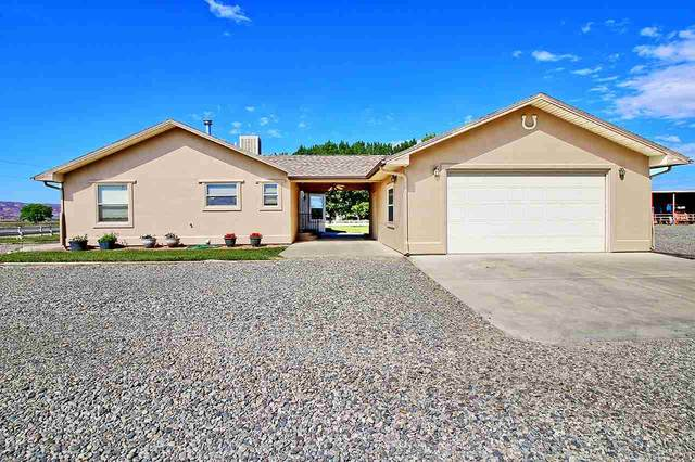 1545 16 Road, Loma, CO 81524 (MLS #20202664) :: The Grand Junction Group with Keller Williams Colorado West LLC