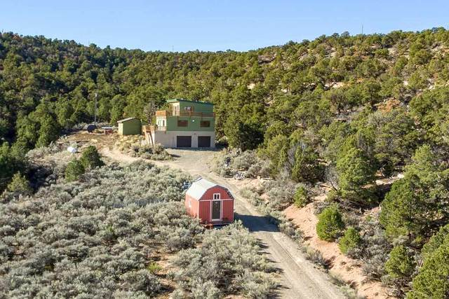 18461 Little Park Road, Glade Park, CO 81523 (MLS #20202668) :: The Grand Junction Group with Keller Williams Colorado West LLC